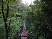 吊り橋を合計4回渡る