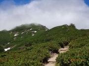 明るい稜線に出たが、山頂方面はガス