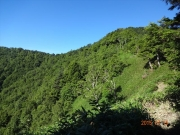 山頂方面を眺望。山頂は右手側だが見えない