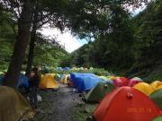 北沢長衛小屋テント場はテントの花畑