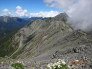 北岳への縦走路とハクサンイチゲ