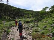 樹林帯~涸沢登り後に現れるオアシス静高平