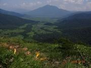 ニッコウキスゲと尾瀬湿原と燧岳