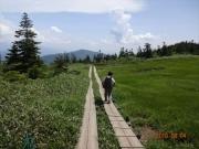 気持ちの良い高層湿原木道歩き