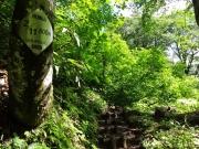 標識が整備された登山道