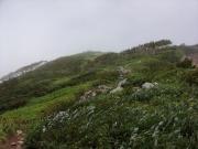 強風の登山道を登る