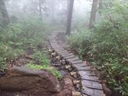 濡れた長い木段を慎重に進む