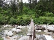 薬師沢沿いの木道橋を進む