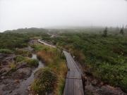 日本最後の秘境・標高2500mに広がる大湿原