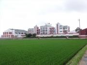 立派な建物は町立横山小学校