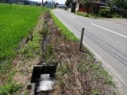 農業用水路も今の私には水場