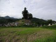 登り坂で見かけた集落の集合墓