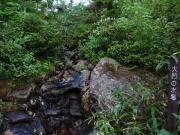 大凹の水場