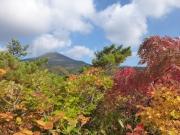 紅葉樹木の間から大岳眺望・その1