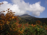 紅葉樹木の間から大岳眺望・その2