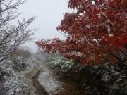 大深岳を過ぎて紅葉と雪の世界