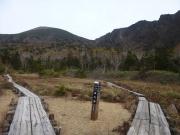 お花畑から岩手山と鬼ヶ城を眺望