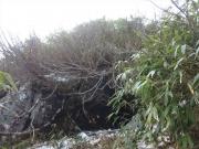 大石の前に草刈機が放置され脇に残雪