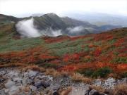 紅葉景色と雲の流れ