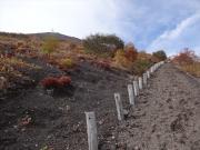 登山道から山頂と草紅葉を堪能