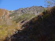 落葉のコメガモリ沢沿いを登る