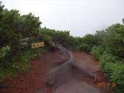 熊見峠は雨でピンぼけ