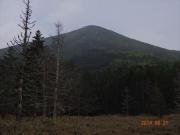 天祥寺原方面から望む美形の山頂