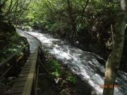 自然遊歩道で渓谷美を堪能!