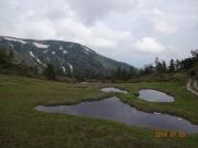 駒ノ小屋近くの池塘